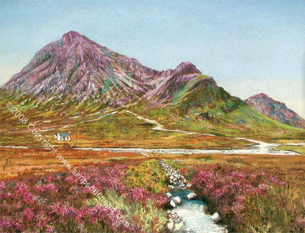 Banks Of Heather At Glencoe